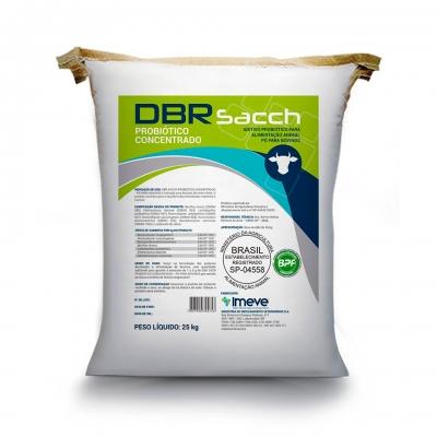 DBR SACCH Probiótico Concentrado